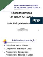 Aula01_IBD_ConceitosBasicos