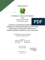 tesis radiografias simples.docx