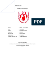 PRAKTIKUM MIKROBIOLOGI YOGHURT NINDA.docx