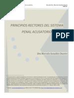 Principios_rectores_del_sistema_penal_ac.pdf