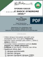 Lapsus DSS NUIM.pptx
