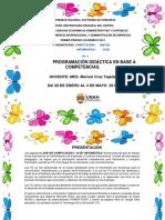 PROGRAMACIÓN ACADÉMICA COMPUTACIÓN I_INFORMÁTICA 1 PAC 2019.pdf