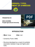 arbuscularmycorrhiza.pdf