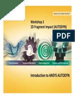 AUTODYN 14.0 WS03 2D Fragment Impact
