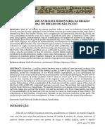 ACIDENTALIDADE NA MALHA RODOVIÁRIA DA REGIÃO CENTRAL DO ESTADO DE SÃO PAULO