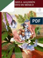 Kuiemuxa_algodon_nativo_de_mexico.pdf