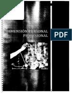 Dimenisión Profesional.pdf