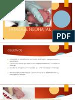 Tamizaje Neonatal - Hipotiroidismo Congenito