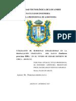 Tesis-Utilizacion de hormonas enraizadoras.pdf