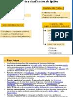 lípidos (2).pdf