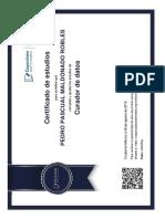 Curador_de_base_de_datos.pdf
