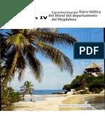 caracterizacion_tomo_i_04_capituloIV.pdf