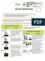 Reproducción Vegetales 2019 Guía