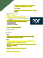 Cerdito-Preguntero Diseño 1er Parcial