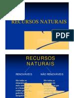 1196122598_recursos_nao_renovaveis