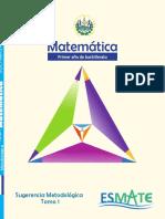 Sugerencia Metodologica 1er ano-tomo 1.pdf