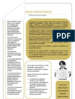 Liceos Prioritarios Resumen Analitico