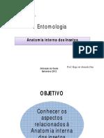 Anatomia Interna e Fisiologia Dos Insetos
