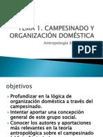 AEII_1_Campesinado(9)