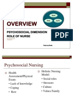 1-N 289 Psychosocial Nursing Overview Ppt - Copy-2