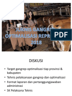 Juknis Gangrep-optimalisasi 18