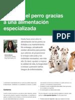 AV_28_Salud en el perro gracias a una alimentación especializada