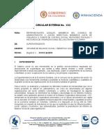 Circular Externa Balance y Beneficio Solidario Final