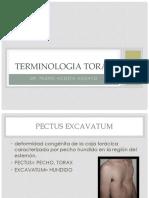 Terminologia Torax