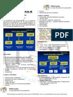 Endocrinologia 2 Manual Color 2