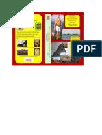 Academia_e-Book_-Chitpavan-Essentials-15.6.15.pdf