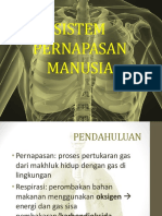 Sistem Pernapasan Manusia IPA PPT