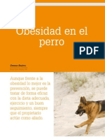 Cv_41_Obesidad en El Perro
