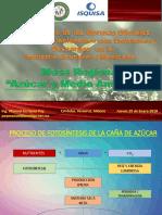 Mesa Regional Azucar y Medio Ambiente