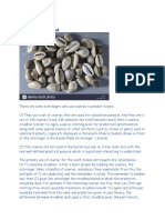 Cowrie Astrology
