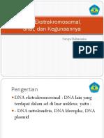 DNA Ekstrakromosomal,.pptx