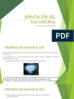 DESHIDRATACIÓN GASES.pptx