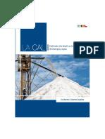 LA CAL CaO más alto implica ahorro de energía y agua (VFF).pdf