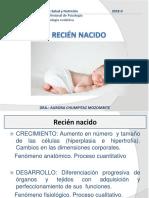 PSICOLOGIA EVOLUTIVA 10.pptx