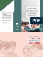 1.CURSO LIDERES PG.pdf