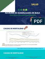Causas de Mortalidad_Observatorio Socioeconómico