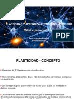 Presentación Plasticidad