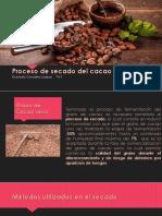 Secado del cacao.pptx
