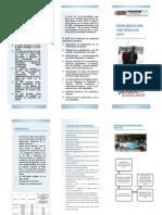 BIAE2019.pdf