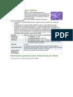 Infecciones Por Vibrio
