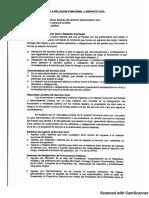 La Relacion Funcional o Servicio Civil_20181108171455