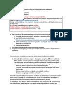 V19TxP2 Maria Susana Hernandez.doc