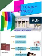 Libro Caja y Bancos