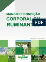 Manejo e condio corporal em ruminantes