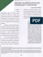 PADILHA, Lindomar Dias. A sebraelização do indigenismo na Amazônia Ocidental. Trinta anos pós assassinato de Chico Mendes, Rio Branco, p.42-48, dez.2018.