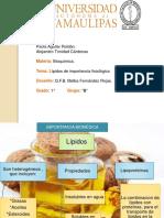 lipidos.pdf